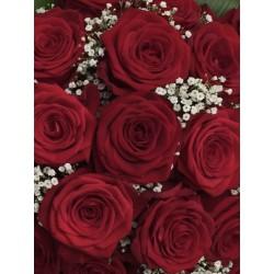 Bouquet 7 roses rouges avec...