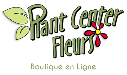 eboutique-plantcenter